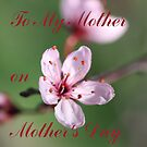 Mother's Day Card by Martina Fagan