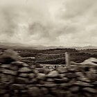 Land,Time - A View  by Carl Gaynor
