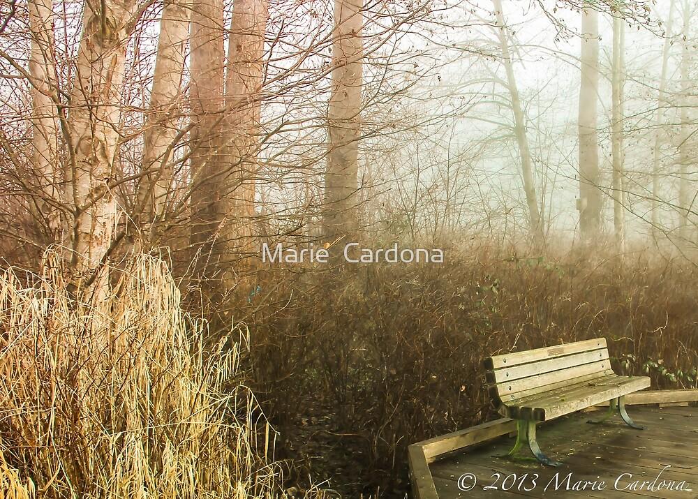Waiting for Company by Marie  Cardona