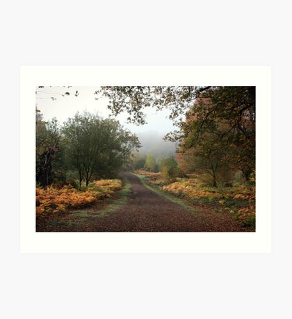 Misty Road of Autumn Art Print