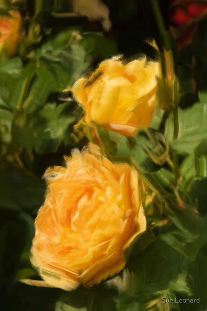 Yellow Roses as pseudo oil painting by Sue Leonard