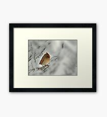 Female Cardinal in Winter Snow Framed Print