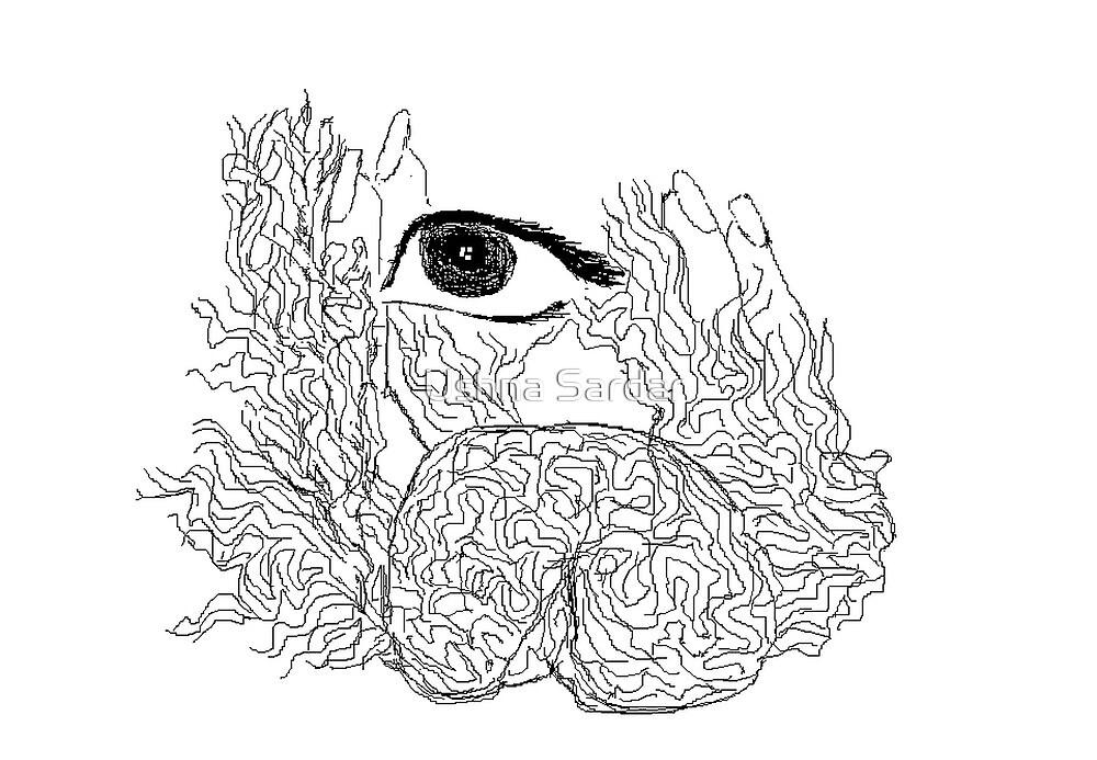 ninth sense - aziums (cintrifugal fields -the higher Consciousness) by Ushna Sardar
