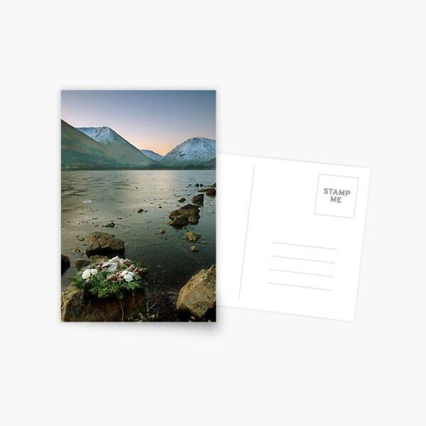 Wreath Postcard