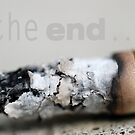The END by Janette Dengo