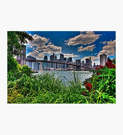 Spring In Brooklyn Bridge Park, NY, USA Photographic Print