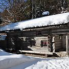 Winter Cottage by Daidalos