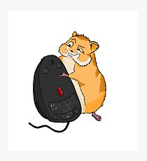 Hamster and a Mouse Photographic Print