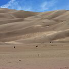 Great Sand Dunes National Park and Preserve  by brucecasale