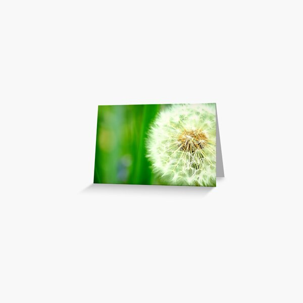 Dandelion green Greeting Card