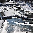 winter river by Daidalos