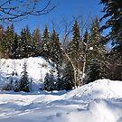 glorious snow by Daidalos