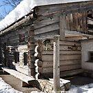 Winter Cottage II by Daidalos