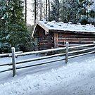 Cottage Scene by Daidalos