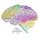 « Cerveau - Texte » par Chrystelle Hubert