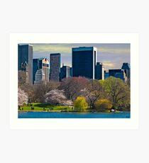 Springtime Arrives In Central Park, New York, USA Art Print