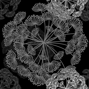 Queen Annes Lace Modern Floral pattern black grey white by Glimmersmith