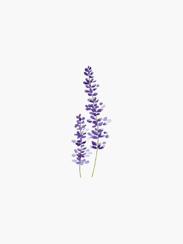 lavender watercolor by mlstoutl