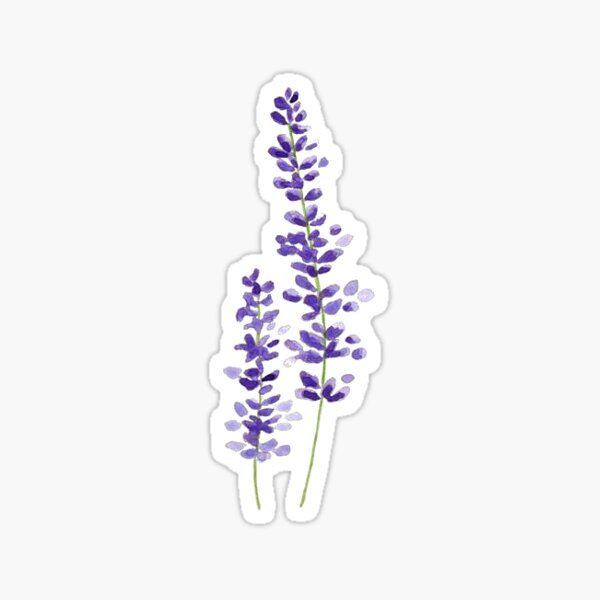 lavender watercolor Sticker