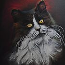 Longhaired cat I by Magaly Burton