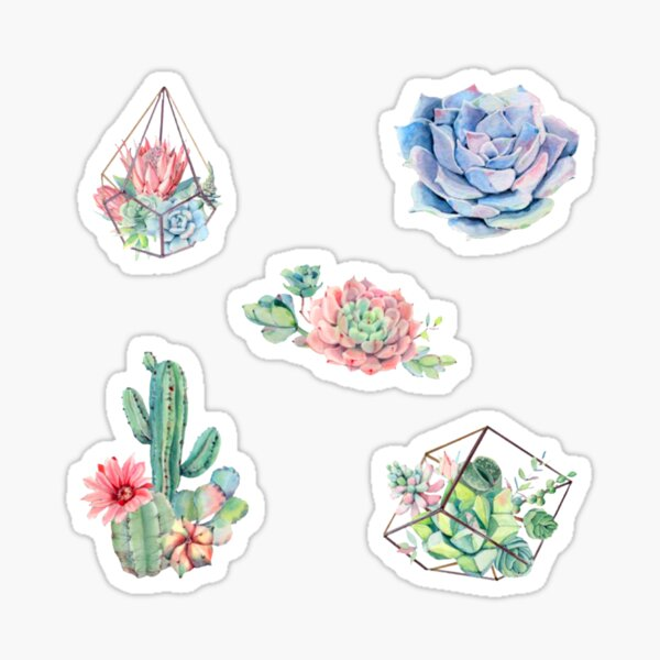 Watercolor Cactus Pack Sticker