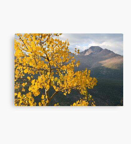 View of Longs Peak Canvas Print