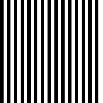 Classic Black and White Vertical Stripes  by deecdee