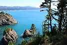 Port Orford, Oregon. by Sun Dog Montana