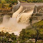 Googong Dam 1 by Werner Padarin
