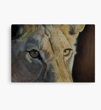 Lion(ess) Eyes Canvas Print