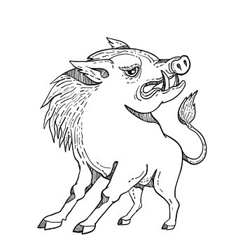 Razorback Doodle Art Black and White by patrimonio