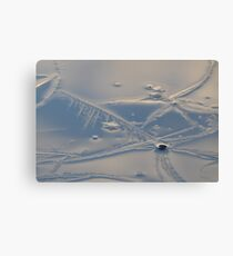 frosty formations Canvas Print