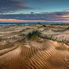 Anna Bay Dunes by Sandra Anderson