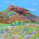 Kununurra Cliff Landscape  #3 by Virginia McGowan