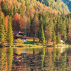 Colorful autumn foliage at the alpine lake by zakaz86