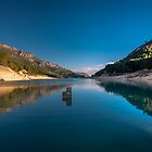 Long reflections by Ralph Goldsmith
