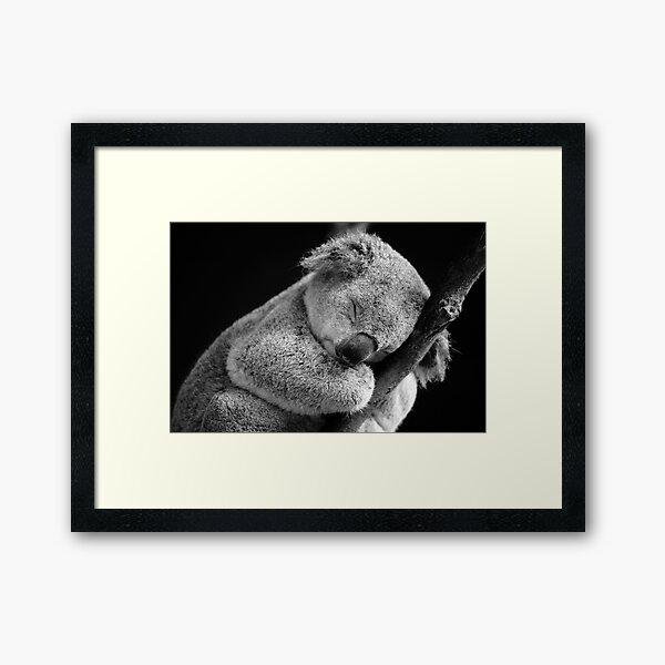Wake Me Later - Sleeping Koala Framed Art Print