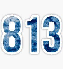 813 Sticker