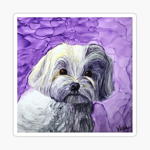 Violet the Maltese Poodle (Maltipoo) Sticker