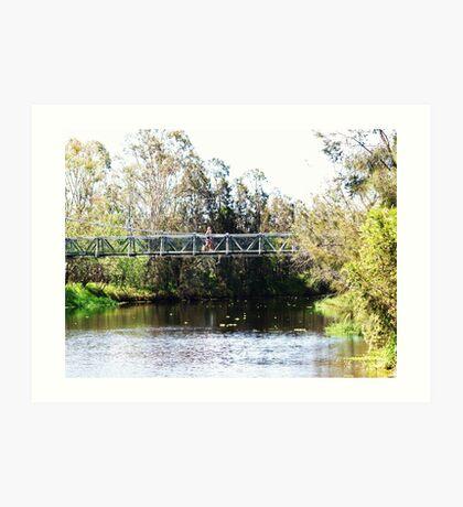 Bridge at Laidley  Gardens Queensland  Art Print