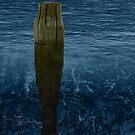 Lone Pier by Shelley Heath