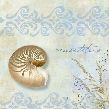 She Sells Seashells II by mindydidit