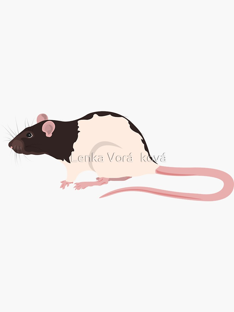 Hooded Rat by Trin4ever