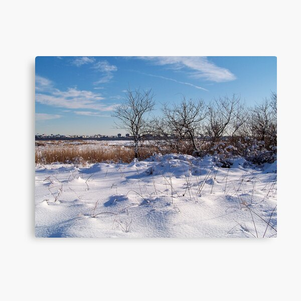 Jamaica Bay Wildlife Refuge Canvas Print