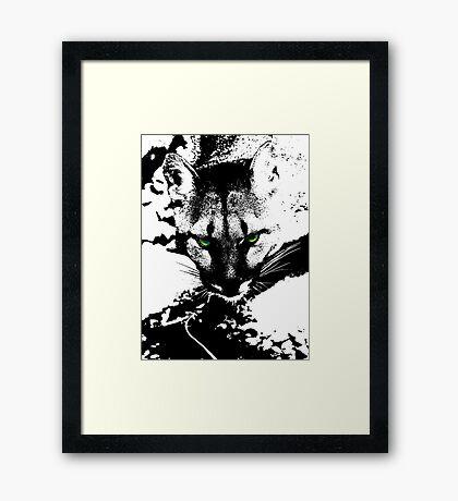 Puma Stare Framed Print