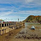Ilfracombe Harbour At Low Water by Rod Johnson