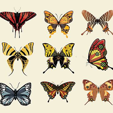 Colorful Butterflies Icons by bza84