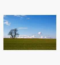 Simplicity In Nature Photographic Print