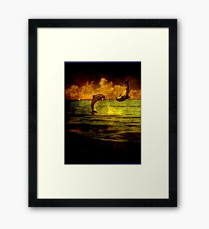 Dolphins jumping Framed Print