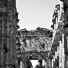 Girl photographs a temple of Paestum by Giuseppe Cocco